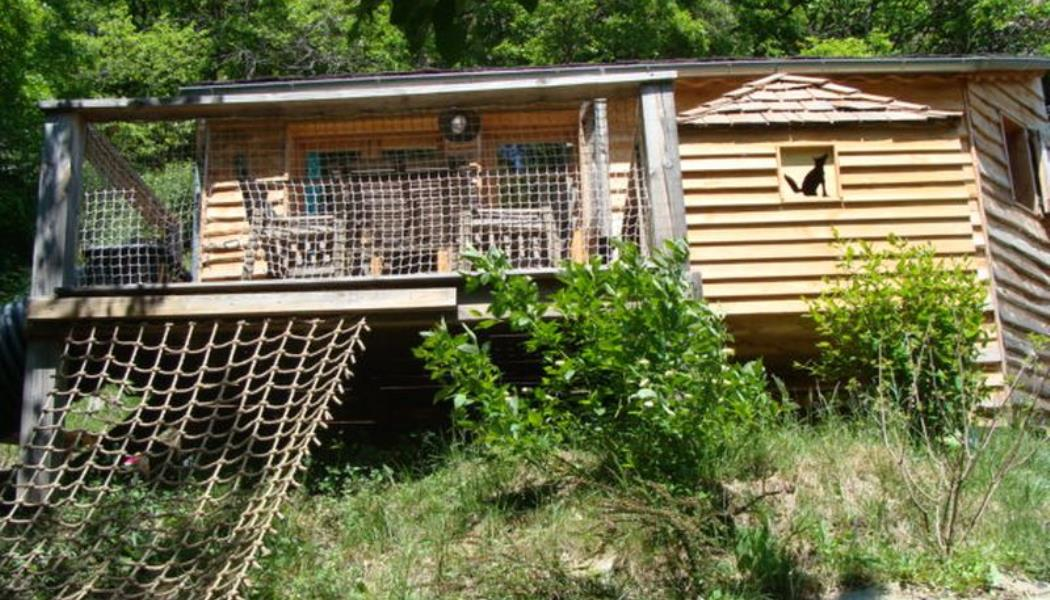 Ma cabane en Lozere