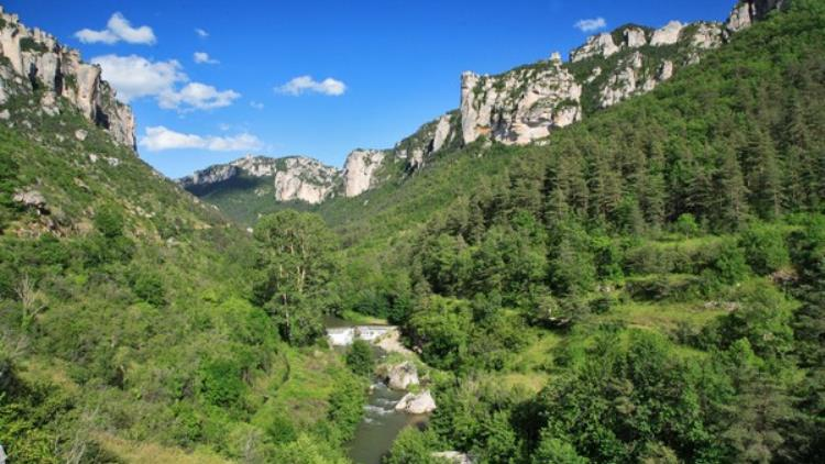 camping-ayres-meyrueis-p09