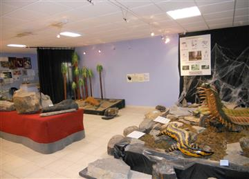 expo foret fossile