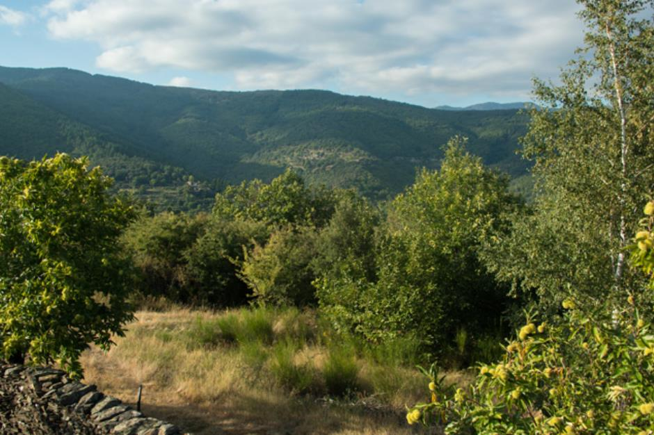 parc-national-des-cevennes-02