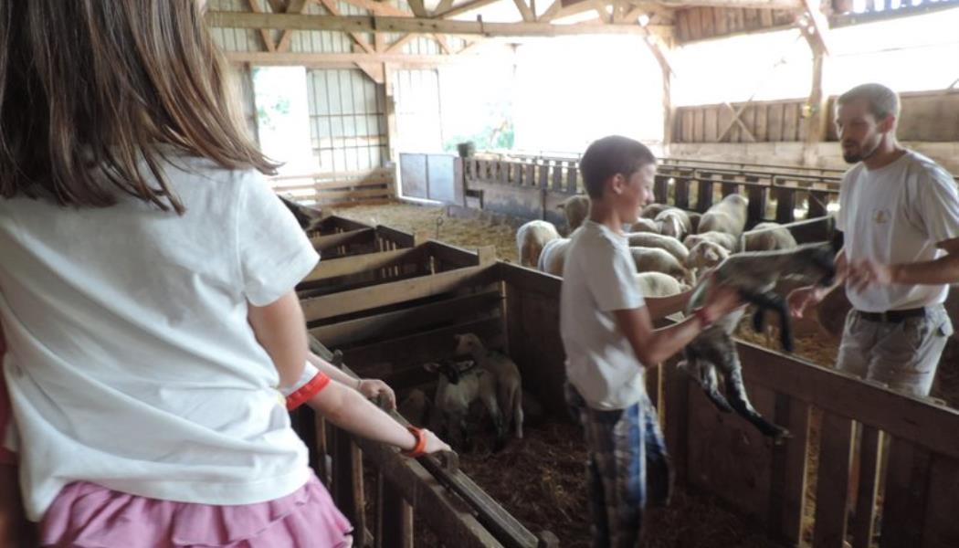 Visite de ferme du gîte L'escapade, Blayac, Séverac d'Aveyron